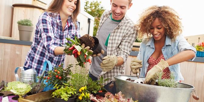 10 tips om een kleine tuin in te richten