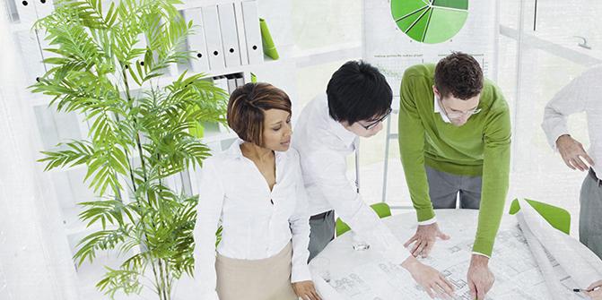 Planten op de werkvloer: belangrijker dan je denkt!