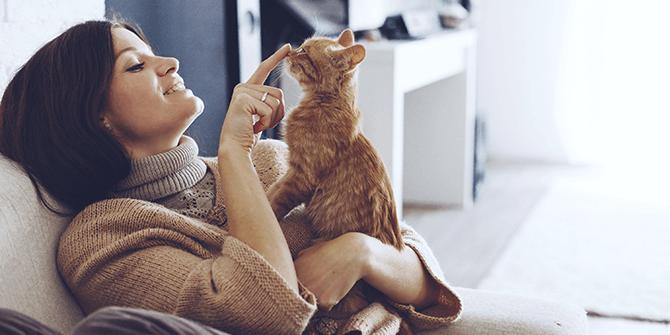 Comfort in je huis – Feng shui als de sleutel tot rust