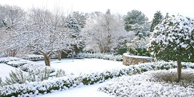 Tuinonderhoud in het najaar – tips voor je tuin winterklaar maken