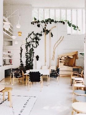 ruimte voor kamerplanten soorten