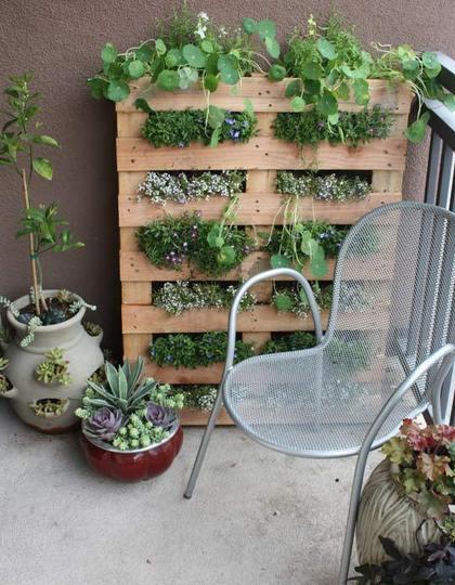 Hergebruik van spullen voor je planten